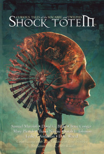 Shock Totem 10 - Curious Tales of the Macabre and Twisted (Cover)